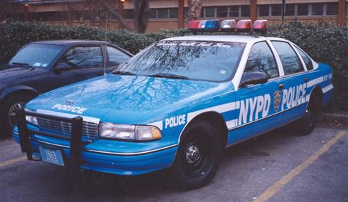 Police Ny Blue And White Rmps
